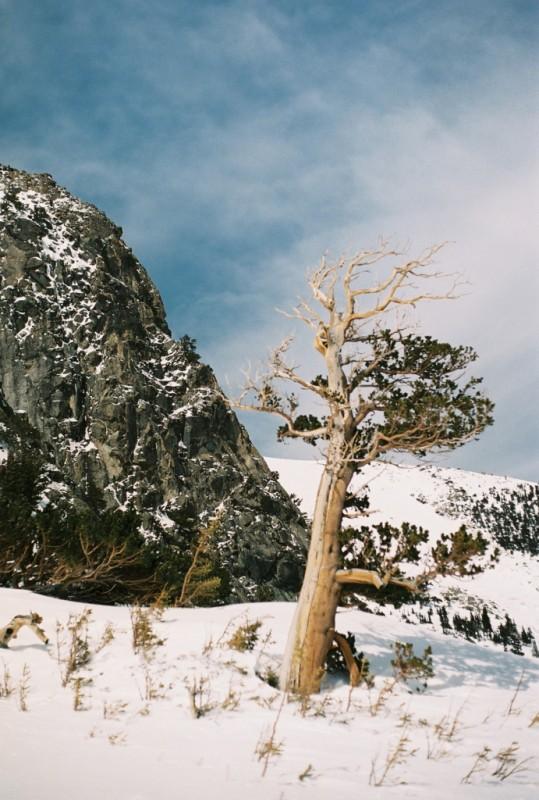 St_Marys_Glacier_2013_small_102