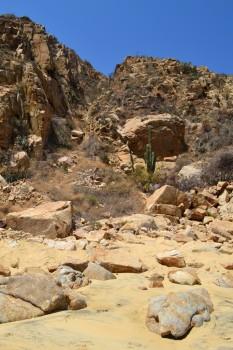 Los Cabos_image202