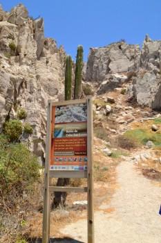 Los_Cabos_May2014_image021