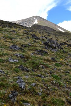 Mount_Elbert_Small_028 - Copy