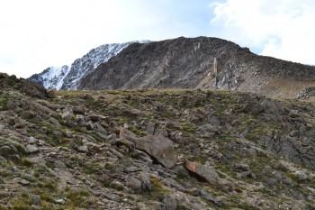 La_Plata_Peak_smallforblog_052