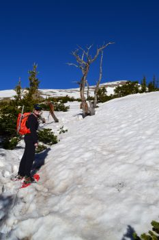 Humboldt_East_Ridge_0024